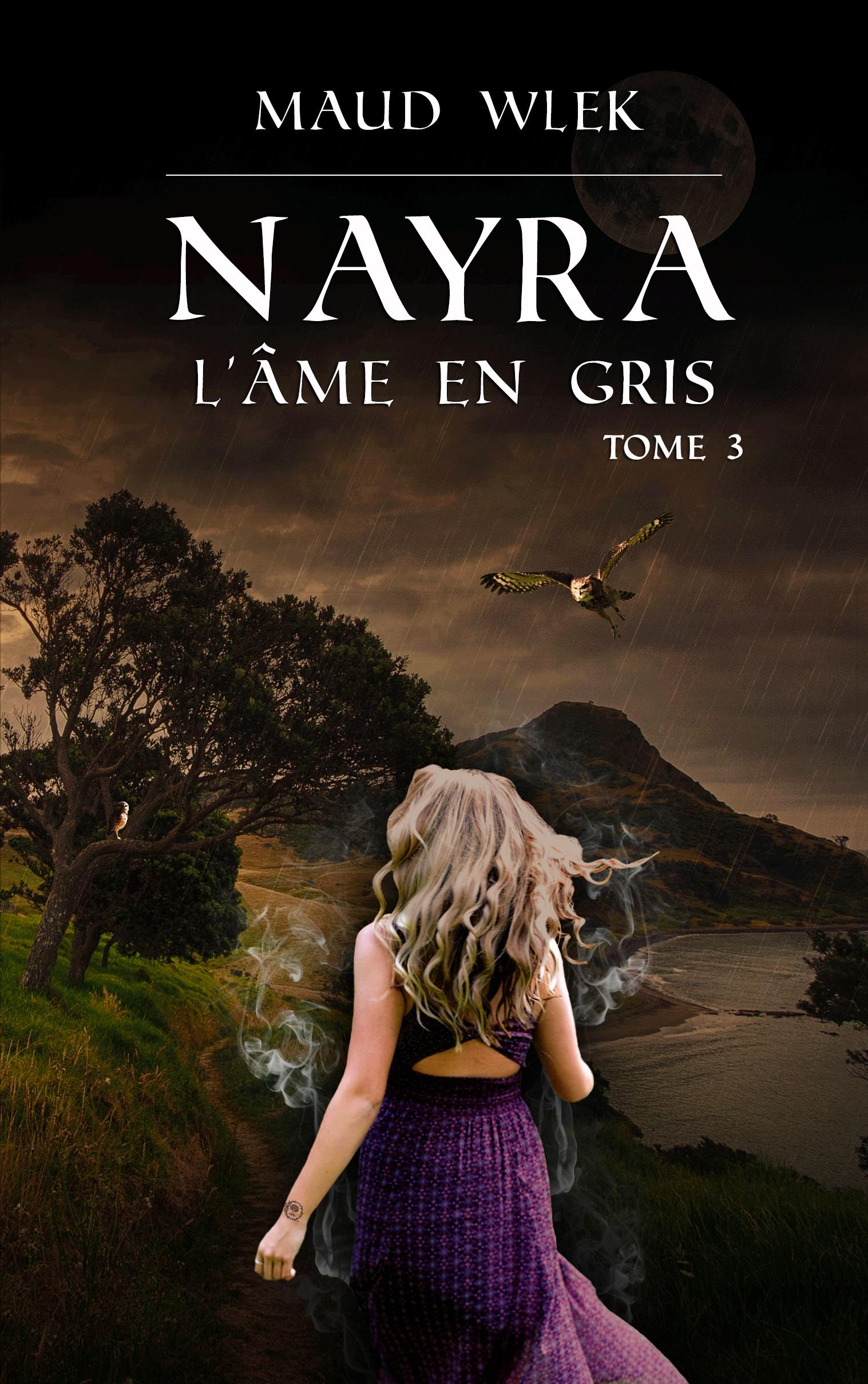 Nayra t.3 L'âme en gris